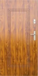 Vchodové dvere WIKED NORMAL 6