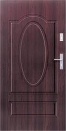 Vchodové dvere WIKED NORMAL 8